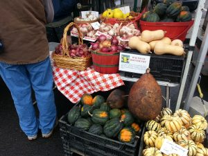 Pitkin-Winterrowd Farms has 5 types of winter squash, $22 for 20lbs!